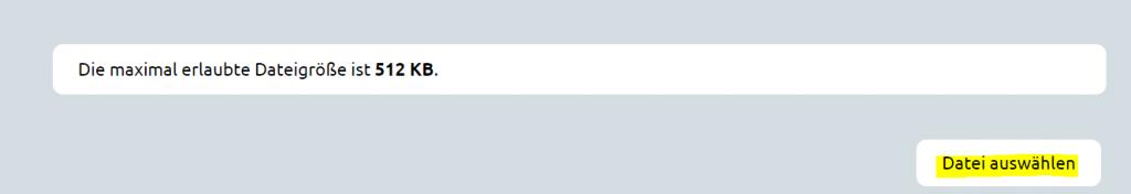 Scrennshot des Eingabeformualr um eine Datei hochzuladen